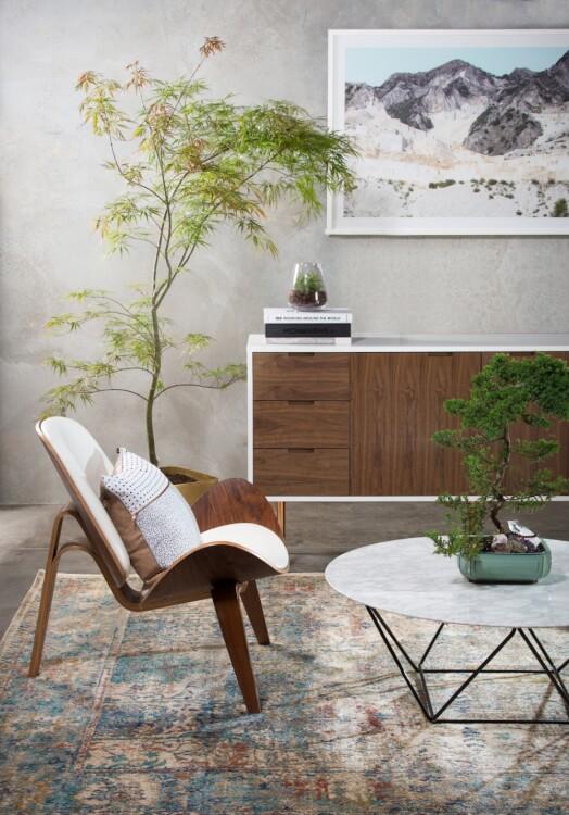 Hình ảnh cận cảnh góc phòng khách phong cách Japandi ấn tượng với ghế tựa bằng gỗ, chậu bonsai đặt trên bàn trà tròn, góc phòng là chậu cảnh lớn xanh tốt.