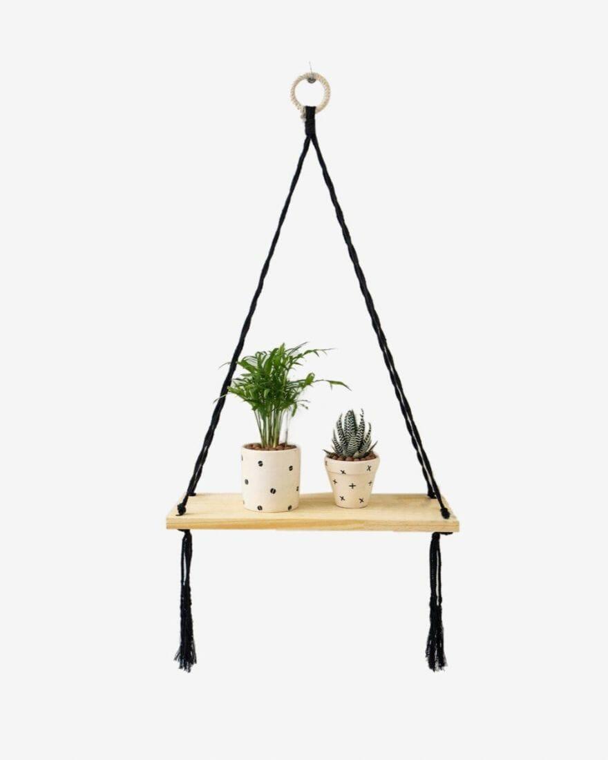 Cây cau tiểu trâm mini đặt ở trên giá gỗ treo tường để trang trí cho không gian nhà ở.