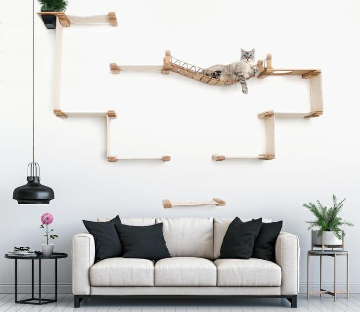 hình ảnh chú mèo nằm vắt vẻo trên nôi treo tường